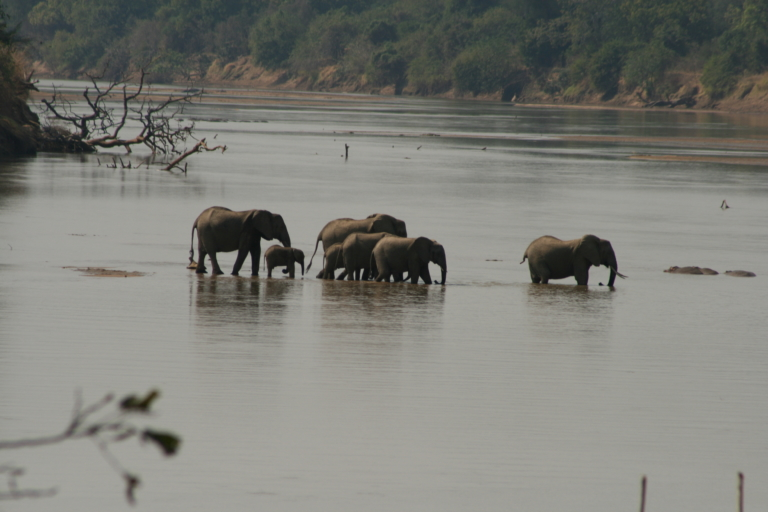 Participants of the RPS-educationals might enjoy this view from Nsefu Camp over the Luangwa river