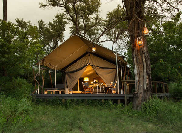 Safari Camps